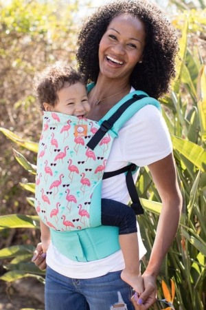 baby tula explore front carry
